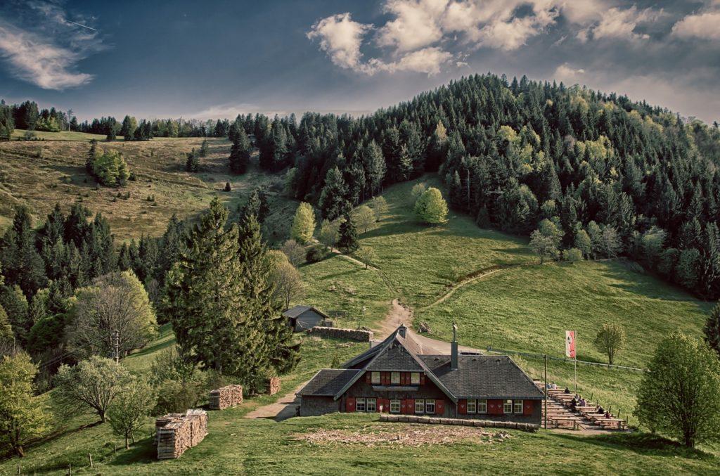 A Floresta Negra da Alemanha está na lista dos 5 destinos de viagem que inspiraram filmes da Disney