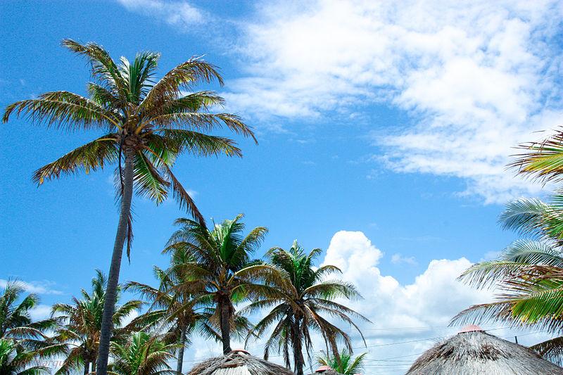 Quais as melhores atrações de Sergipe: praias de Aracaju