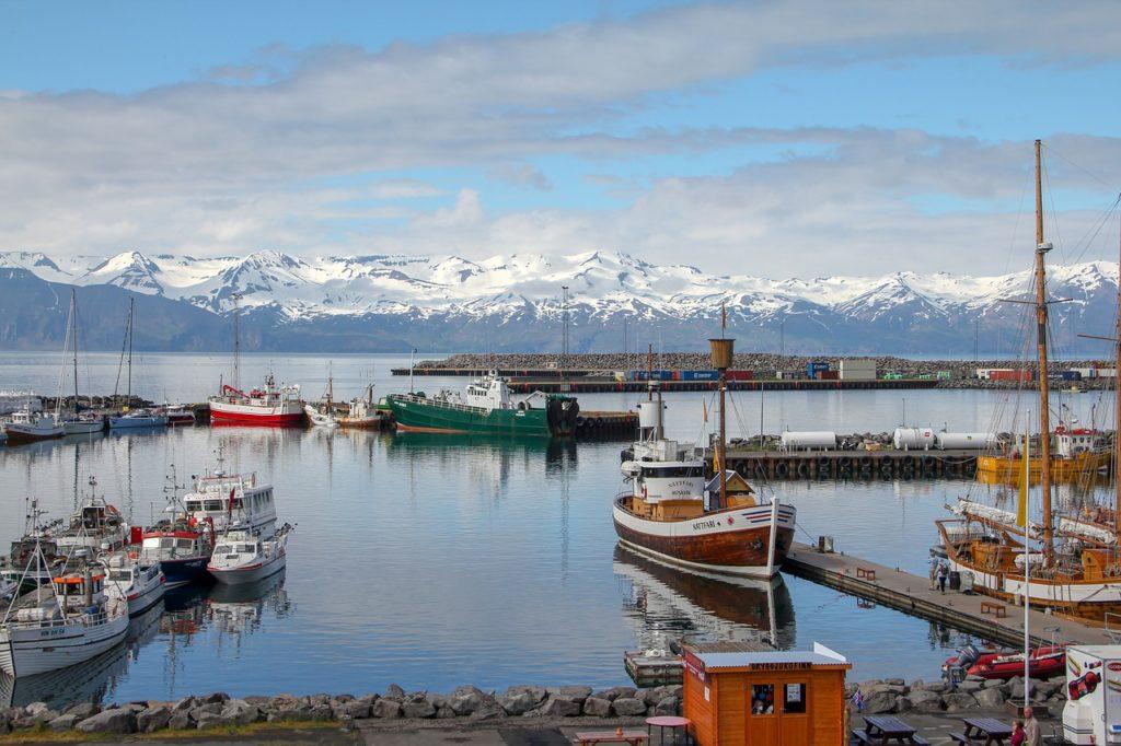 Com área extensa de água, um dos programas na Islândia é avistar baleias