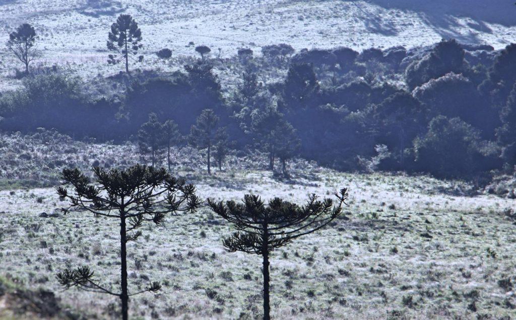 Qual o lugar que neva no Brasil? Há varias cidades em Santa Catarina e no Rio GRande do Sul
