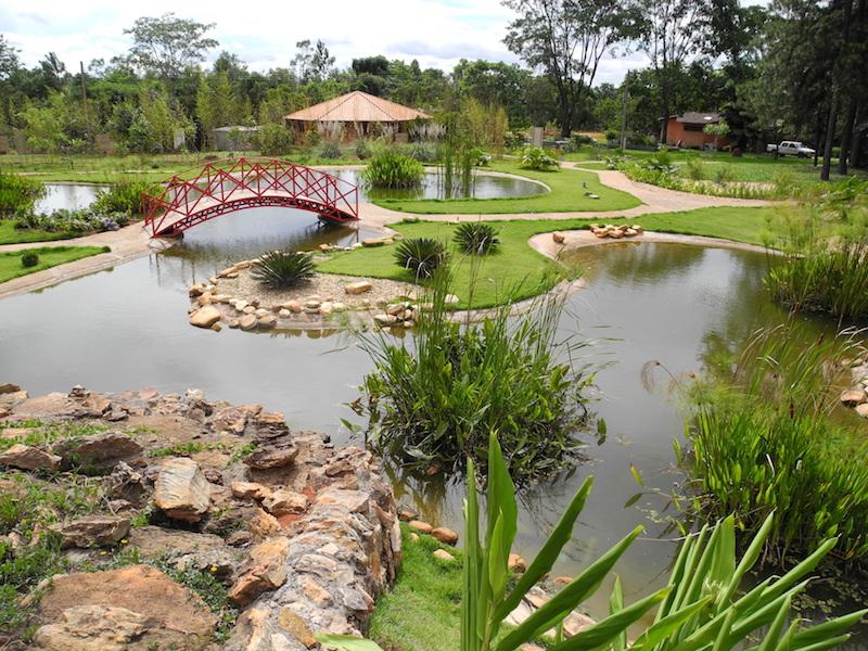 Brasília tem o seu Jardim Botânico que é uma ótima atração para visitar em família