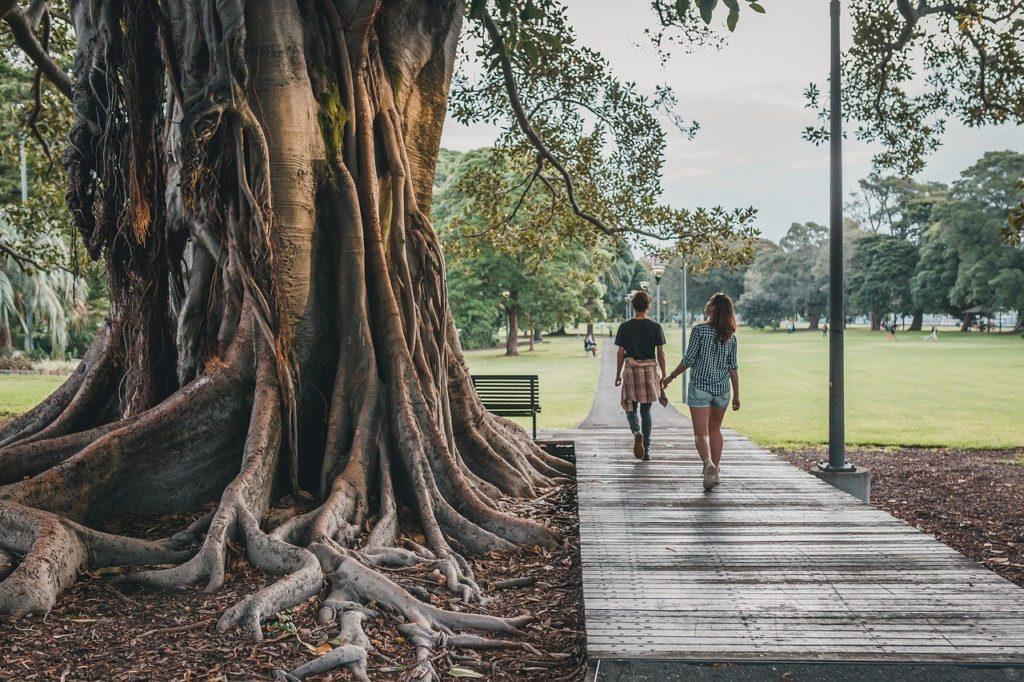 Os parques estão por toda parte e dividem bem a atenção do público com as praias