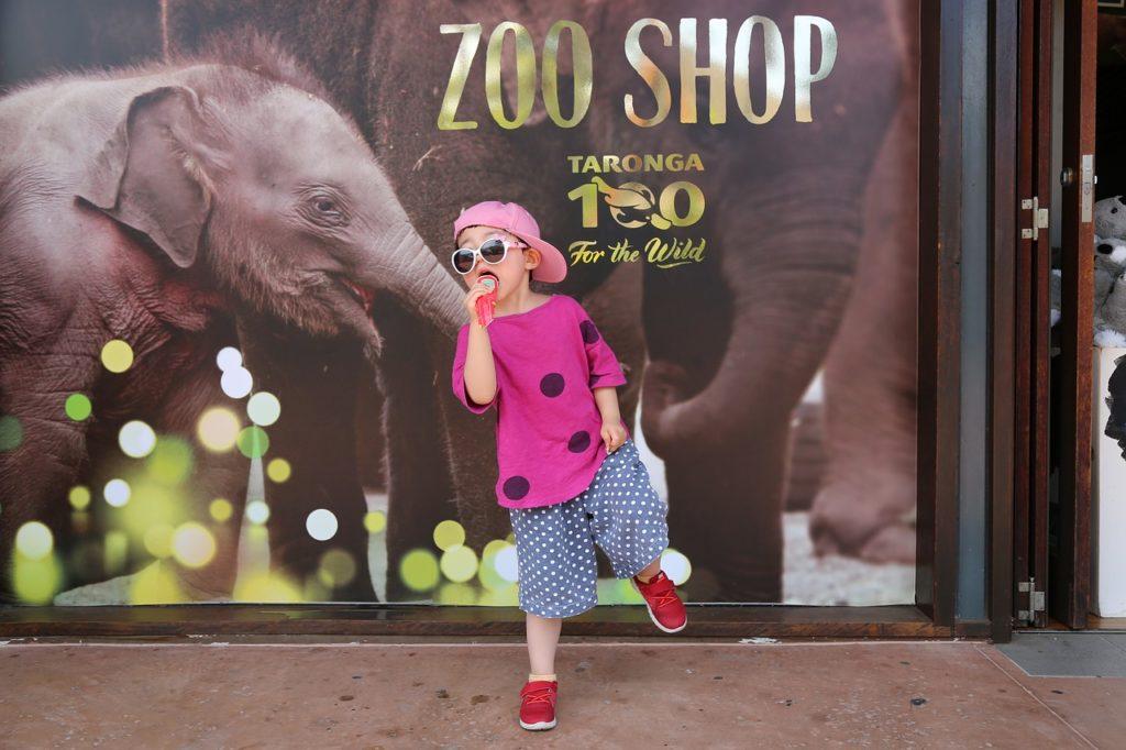A geografia da cidade faz com que muitos dos bons atrativos estejam super bem localizados.  O Taronga Zoo é um deles