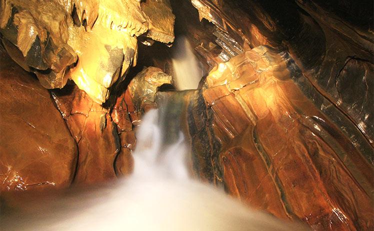 O Petar é um parque que mantém uma das maiores áreas remanescentes de Mata Atlântica do Brasil