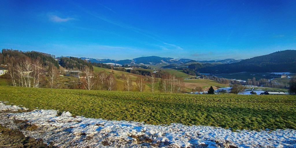 Na Europa, destaque de acolhimento para  a Áustria