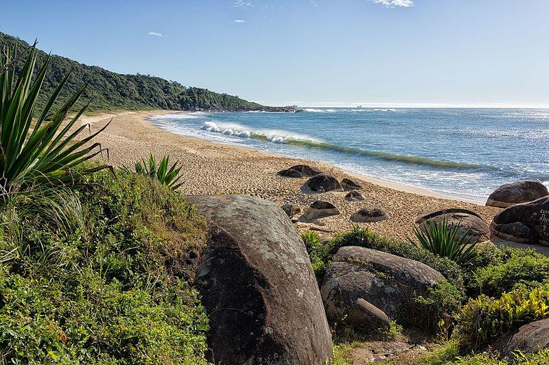 Até Balneário Camboriú tem praia com menos visitantes e muito verde
