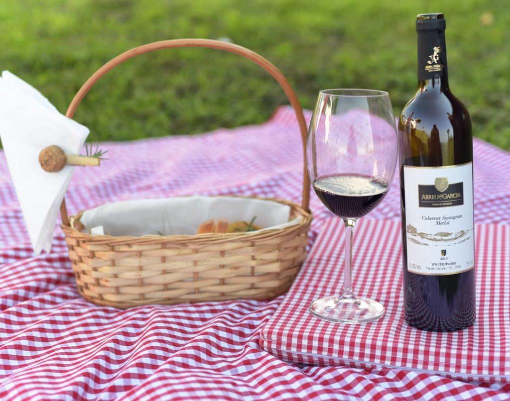Os passeios são muito bem-vindos em vinícolas de todo o país