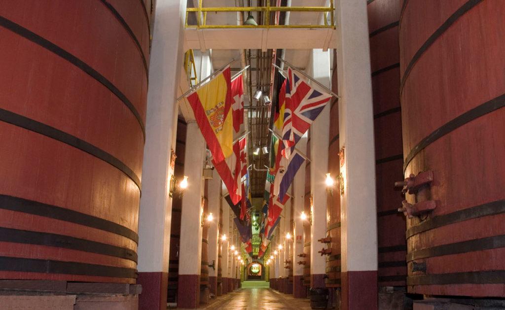 A Aurora é uma cooperativa de vários produtores que a transformaram na maior vinícolas do Brasil