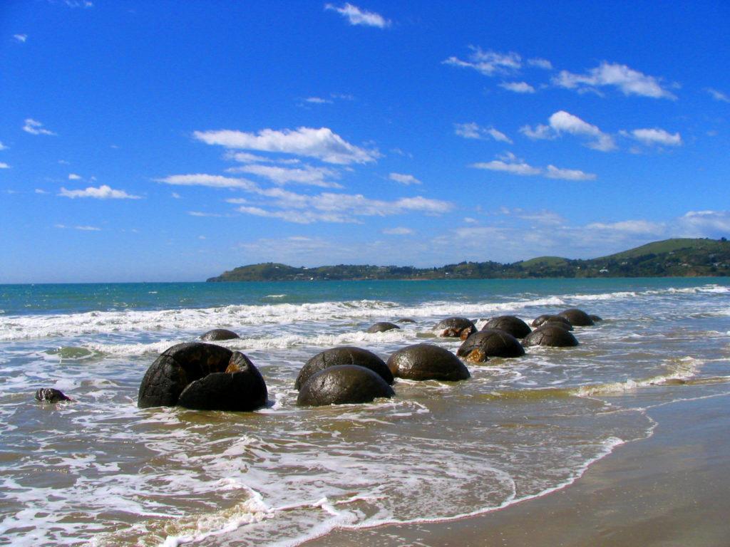 Pedras que parecem cascos de tartarugas são as formações rochosas desta praia na Nova Zelândia