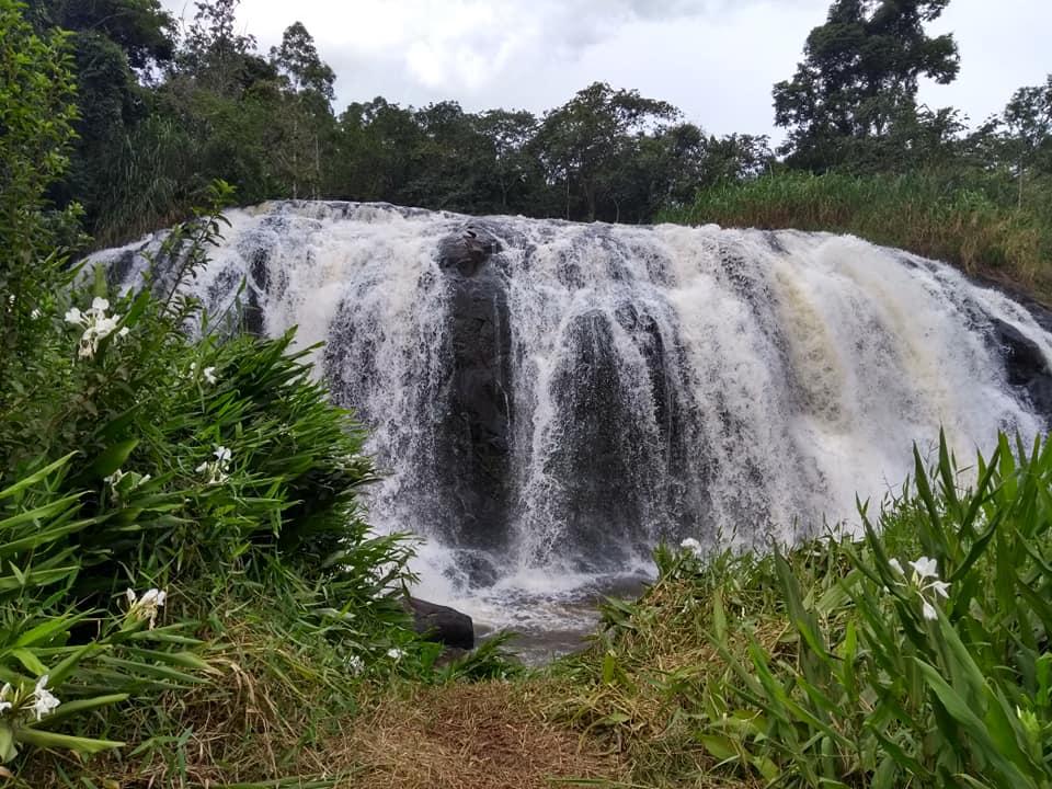 Cajuru é cidade vizinha de Ribeirão Preto