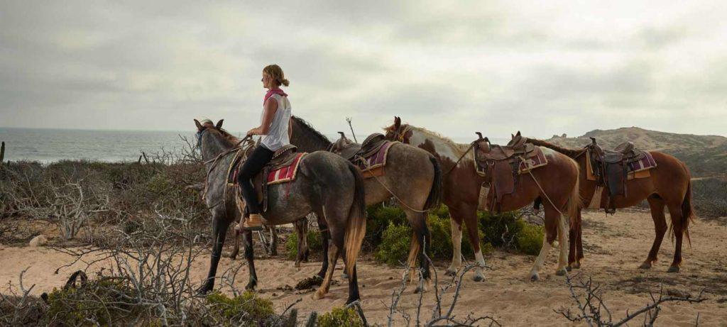 O que fazer em Los Cabos no México? O Viajar é Vida conta neste post