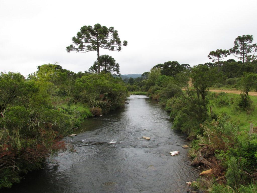 O Parque Municipal entra na lista de Quais as trilhas de Lages em SC