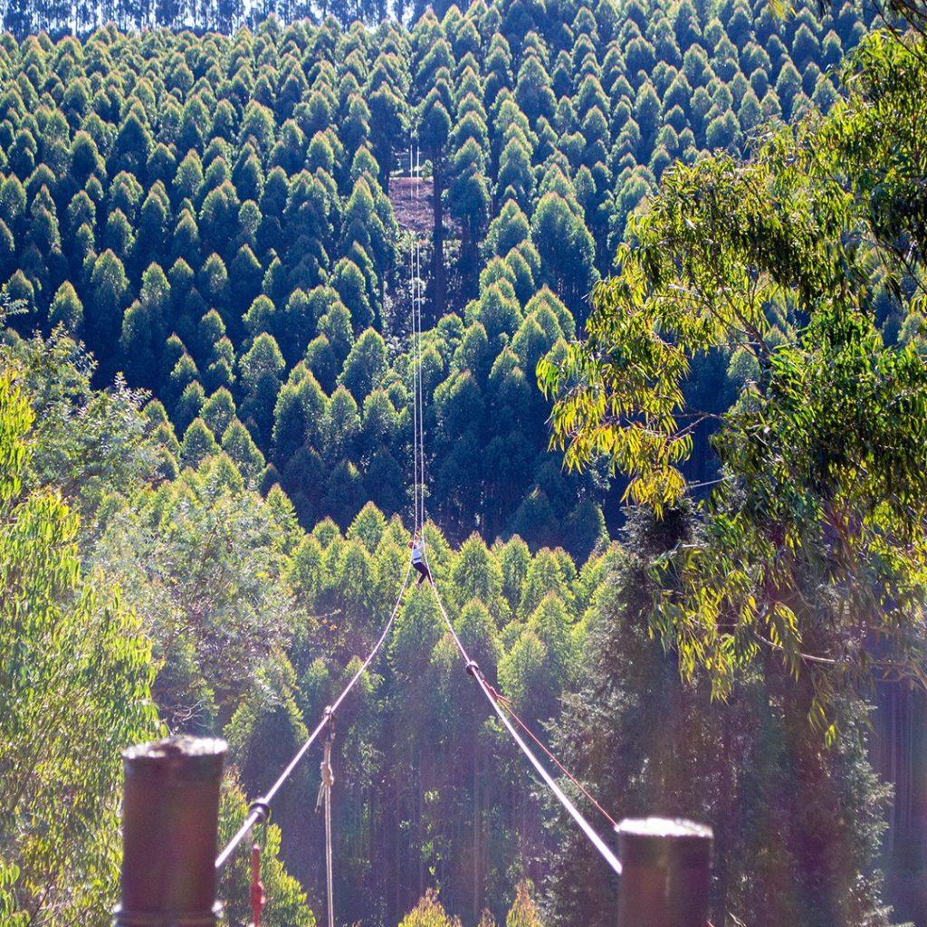 A tirolesa de Monte Verde está entre as mais bacanas de todo o país