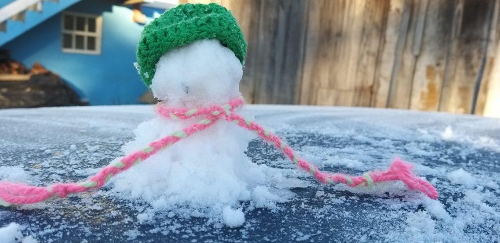 Que tal fazer boneco com o gelo acumulado pela geada?