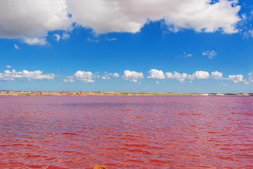 No Azerbaijão, o sal e os microorganismos colorem a água de rosa