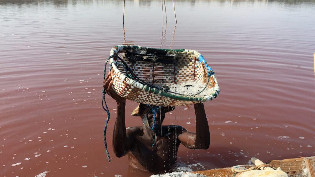 No Senegal, o lago cor de rosa ajuda no sustento de famílias