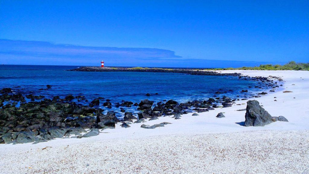 Onde se situam as Ilhas Galápagos? Parque Nacional preserva o arquipélago