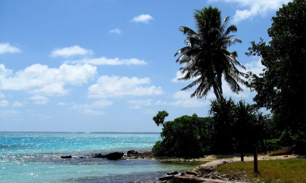 A produção de polpa de coco seco é o principal produto de exportação de Kiribati