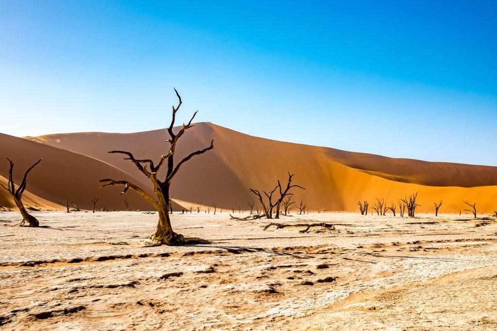 Desertos e costa da Namíbia na lista das 7 maravilhas naturais mais incríveis do mundo