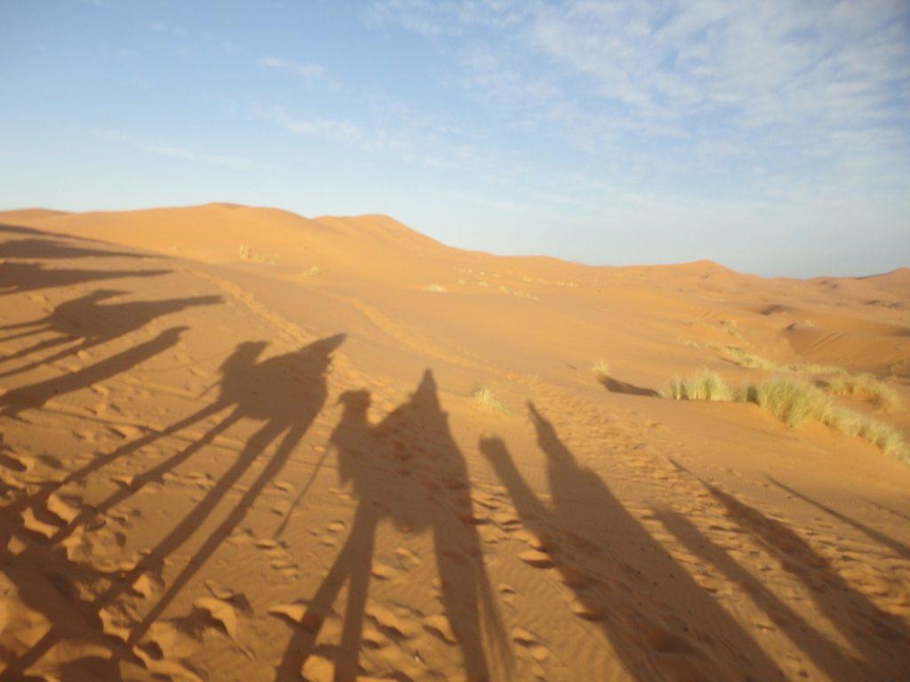 A lista das 7 maravilhas naturais mais incríveis do mundo termina com o Deserto do Saara